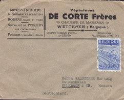 Belgium Pépiniéres DE CORTE FRÉRES, WETTERN 1948? Cover Lettre SULZBACH Germany Industrie Textile Stamp - België