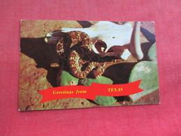 Snake --Diamondback Rattle Snake Greetings From Texas      Ref 3291 - Fish & Shellfish