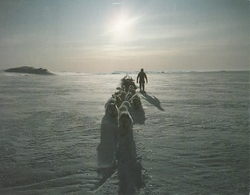Cartolina  - Postcard / Non  Viaggiata - Not    Sent  /  Groelandia, Pituffik. - Greenland