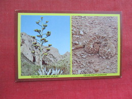 Snake------ Texas Century Plant & Rattlesnake     Ref 3291 - Fish & Shellfish