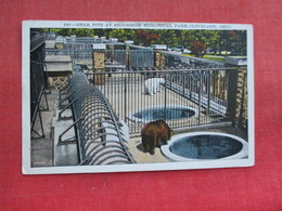 Bear Pit  Brookside Zoo Cleveland    Ref 3291 - Bears