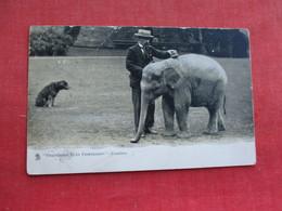 Elephant   Friendship Buys Friendship  Ref 3291 - Elephants