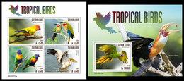 SIERRA LEONE 2019 - Tropical Birds, Parrots. M/S + S/S Official Issue. - Papegaaien, Parkieten