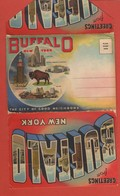 CP20 DEPLIANTS Complet U.S.A  NEW YORK  BUFFALO   Greeting From 18 Vues - Tourism Brochures