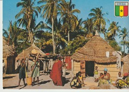C.P. - PHOTO - COULEURS DU SÉNÉGAL - SCÈNE DE LA VIE QUOTIDIENNE DANS UN VILLAGE - M. HUET - 1005 - - Sénégal