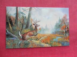 Whitetail Deer    Ref 3291 - Animals