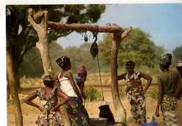 Femmes Sereres Et Peuhls Du Sine Saloum , Puits - Sénégal