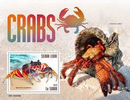 SIERRA LEONE 2019 - Crabs, Shell S/S. Official Issue. - Schelpen