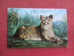 Tiger     Ref 3292 - Tigers