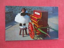 Chimpanzee Play Music For Her Public Philadelphia  Zoo   Ref 3292 - Monkeys