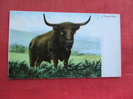 Texas Steer    Ref 3292 - Monkeys