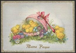 BUONA PASQUA - PULCINI - EDIZIONE CECAMI # 7374 - VIAGGIATA 1961 - Pasqua