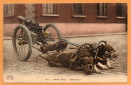 Military Dog Cart 1907 Postcard - Belgien