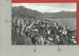 CARTOLINA NV SVIZZERA - LOCARNO - Vista Generale - 9 X 14 - TI Tessin