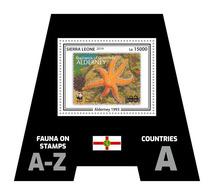 SIERRA LEONE 2019 - Fauna, Alderney: Starfish. Official Issue. - Maritiem Leven