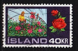 ISLAND ICELAND [1972] MiNr 0467 ( O/used ) Pflanzen - 1944-... Republik