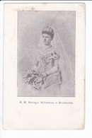 H.M. Koningin Wilhelmina In Bruidstoilet ( Reine Des Pays-Bas) - Personnages Historiques
