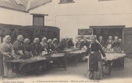 BRETAGNE: L'Industrie Sardinière Bretonne - Mise En Grille Pour Le Séchage - Non Classés