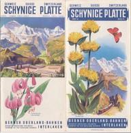 Dépliant Touristique Schynige Platte / Berner Oberland Bahnen / Interlaken / Suisse / Schweiz - Dépliants Touristiques