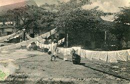 SENEGAL(INONDATION) ARBRE - Sénégal