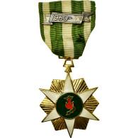 Viet Nam, Campagne, Chien-Dich Boi-Tinh, Médaille, 1960, Excellent Quality - Militari