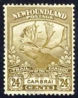 Canada Newfoundland Sc# 125 Used 1919 24c Caribou - 1908-1947