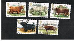 GRAN BRETAGNA (UNITED KINGDOM) -  SG 1240.1244  -  1984 CATTLE (COMPLET SET OF 5)  - USED - 1952-.... (Elizabeth II)