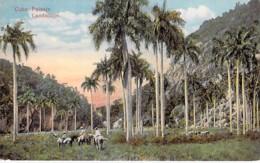 Caraibes Caribbean - CUBA - Paisaje / Landscape - CPA - Antilles - Cuba