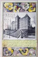Germany Flensburg 1902 Send To Heisager Strand - Germania