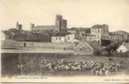 CPA - SAINTES-MARIES - VUE GENERALE (IMPECCABLE) - Saintes Maries De La Mer