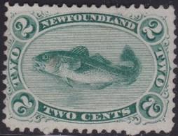 Newfoundland      .   SG  .    31     .    (*)       .   No-gum       .   /    .  Geen  Gom - Newfoundland