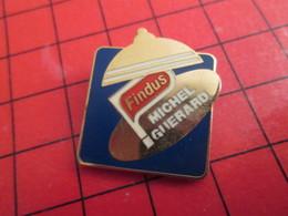 513b Pins Pin's  / Rare Et De Belle Qualité / THEME ARTHUS-BERTR : FINDUS (lasagnes De Cheval ?) SURGELES MICHEL GUERARD - Arthus Bertrand
