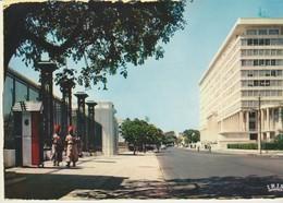 C.P. - PHOTO - RÉPUBLIQUE DU SÉNÉGAL - DAKAR - LE BUILDING DU GOUVERNEMENT GÉNÉRAL ET L'AVENUE ROUME - 27 - VINCENT - Sénégal