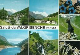 """3354 """"SALUTI DA VALGRISENCHE Mt.1664-FRAZ. GERBELLE E DARBELLEY-DIGA BEAUREGARD-CASCATA SURIER""""CART. POST. OR. NON SPED. - Saluti Da.../ Gruss Aus..."""
