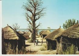 C.P. - PHOTO - COULEURS DU SÉNÉGAL - VILLAGE DU SINE SALOUM - M. RENAUDEAU - 1015 - HOA QUI - Sénégal