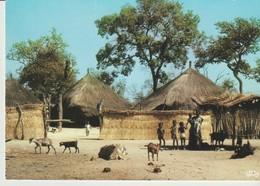 C.P. - PHOTO - COULEURS DU SÉNÉGAL - CONCESSION EN BROUSSE - M. RENAUDEAU - 1021 - HOA QUI - Sénégal