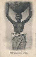 AN 94   / C P A     AFRIQUE-   SENEGAL - JEUNE OUOLOF DE DAKAR - Sénégal