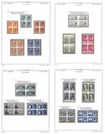 LOTTI E COLLEZIONI - Repubblica - 1954/1965 - Collezione Avanzata In Quartine Del Periodo Montata Su Fogli Euralbo - Gom - Non Classificati