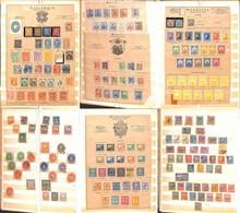 LOTTI E COLLEZIONI - Americhe - 1851/1920 - Album Contenente Valori Del Periodo Usati Del Sud America E Degli Stati Unit - Non Classificati