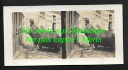 Paris Jardin Des Plantes Hippopotame - Superbe !! Photos Stéréoscopiques 8,5X17cm Env  - Zoo - Stereo-Photographie