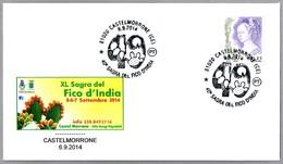 FIESTA DE LA FICODINDIA - FEST OF FICODINDIA - Cactus. Castelmorrone, Caserta, 2014 - Cactus