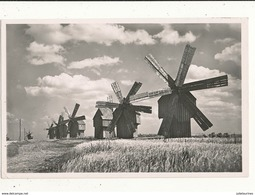 MOULIN ROMANIA MOULINS A VENT EN BESSARABLE CPA BON ETAT - Windmühlen