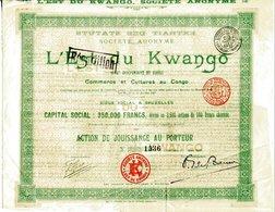 Congo Belge: L'EST Du KWANGO (État Indépendant Du Congo) - Afrique