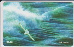 #08 - ISLE OF MAN-23 - ALONG THE WAVE - BIRD - Isle Of Man