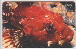 #08 - ISLE OF MAN-24 - FISH - Isle Of Man
