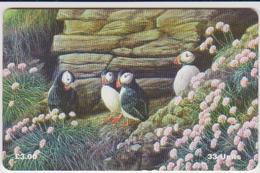 #08 - ISLE OF MAN-28 - PUFFINS - Man (Eiland)