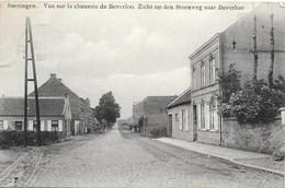 Beeringen NA9: Vue Sur La Chaussée De Beverloo 1913 - Beringen