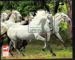 CROATIA , 2018, MNH, HORSES, S/SHEET - Chevaux