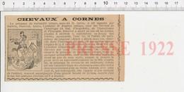 Presse 1922 Chevaux à Cornes Thème Licorne Cheval à Bascule Enfant Jouet Trompette Soldat De Plomb  226F - Non Classés