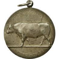 Belgique, Médaille, Ministère De L'Agriculture, 1958, De Meest, SUP, Silvered - Belgique